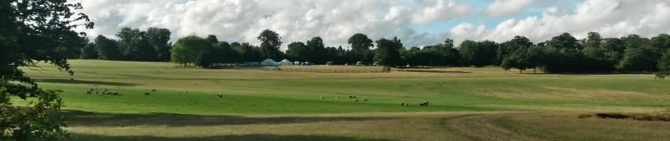 Camp at Haughly Park 2013